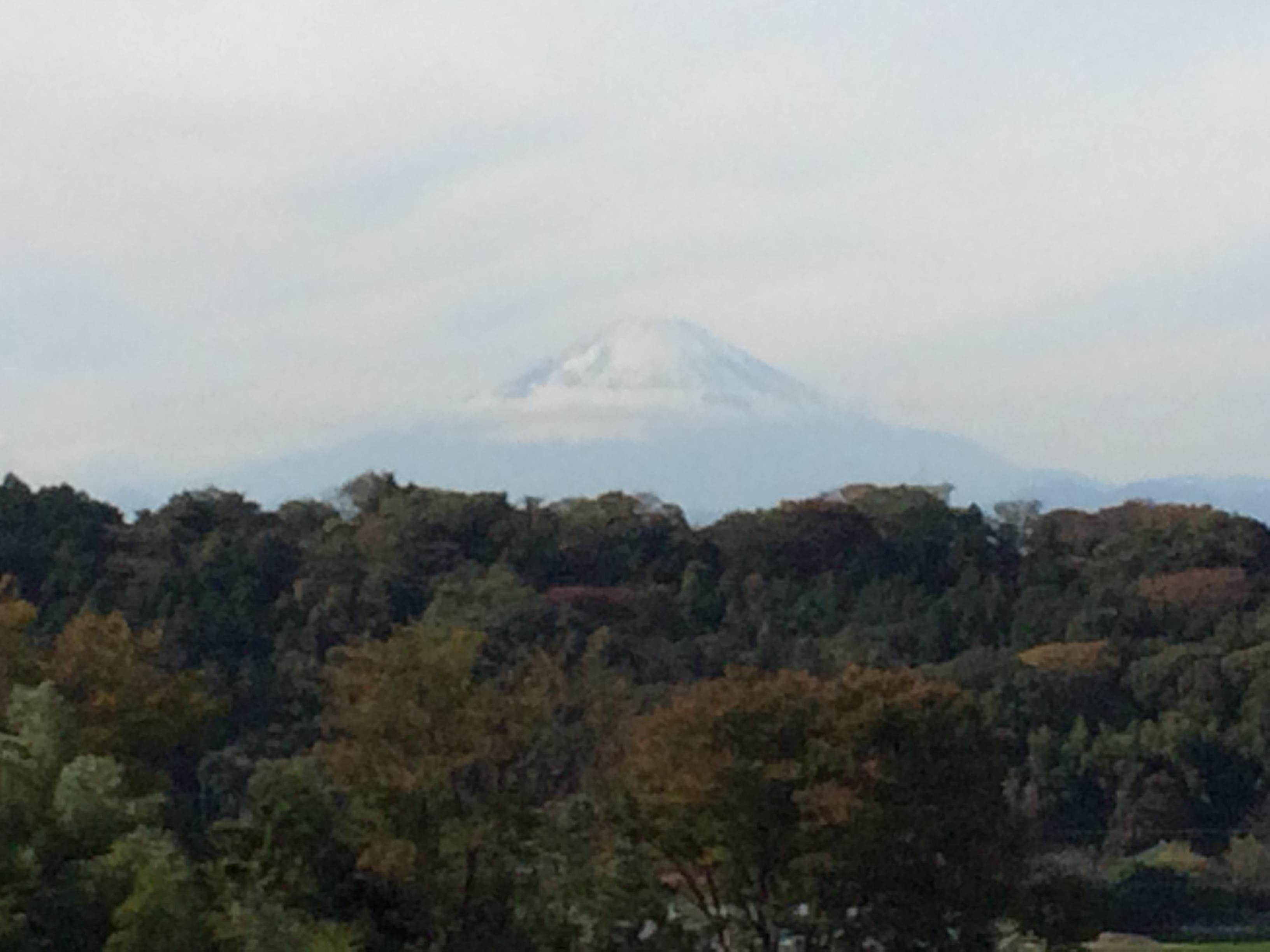 みかんと富士山